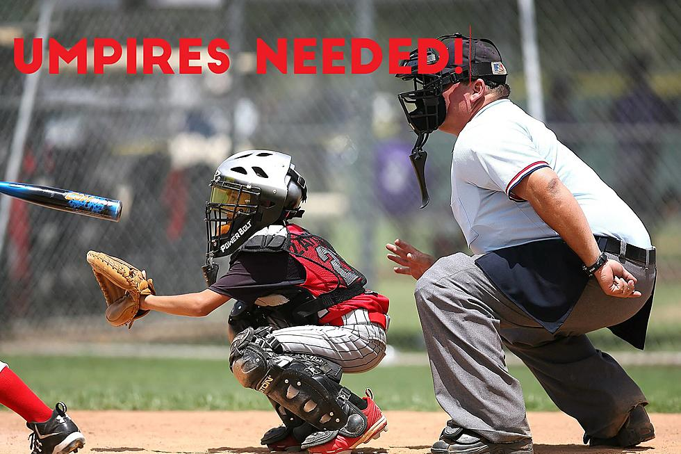 Image result for little league umpires