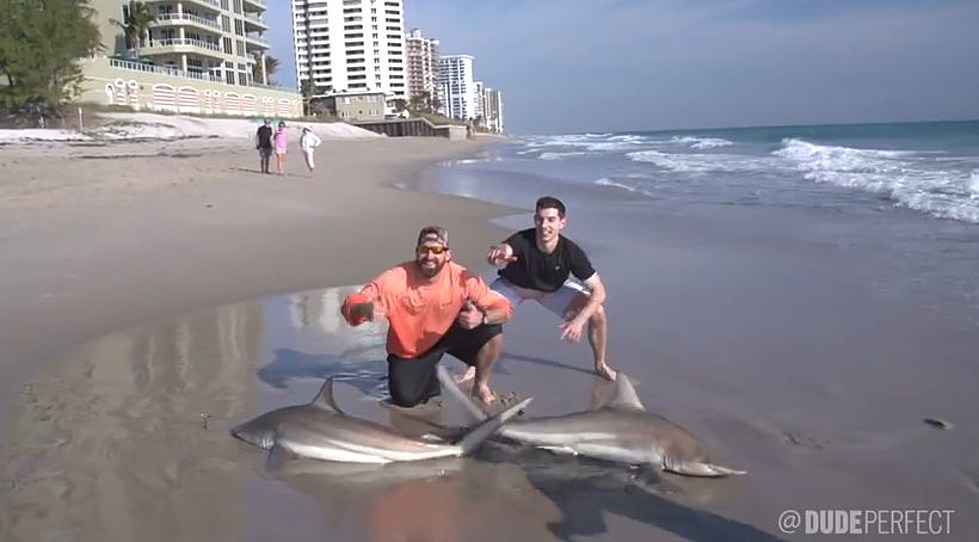 Dude Perfect Compete Against Each Other To Catch The Most Sharks In Shark Fishing Battle