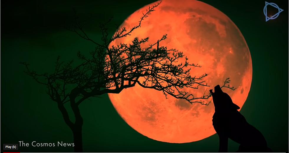 Watch First Total Lunar Eclipse Of 2019 Super Blood Wolf Moon J