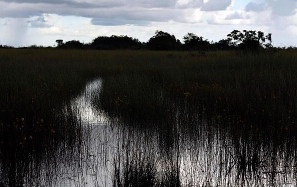 Former Swamp People Reality Star Dies In Louisiana Car Crash