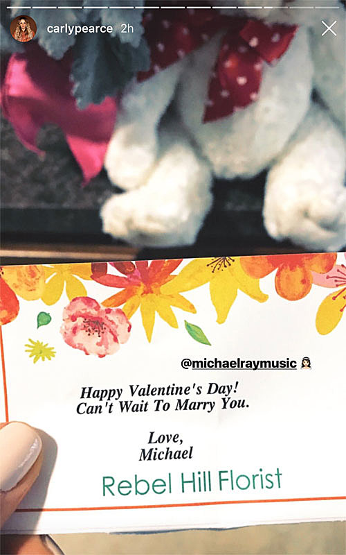 Carly Pearce Got The Sweetest Valentine From Fiance Michael Ray - Michael-flowers-henry-point