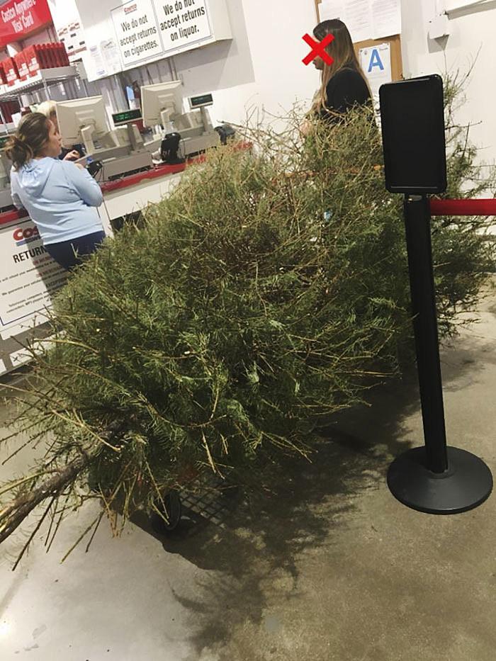 - Woman Returns Real Christmas Tree To Costco