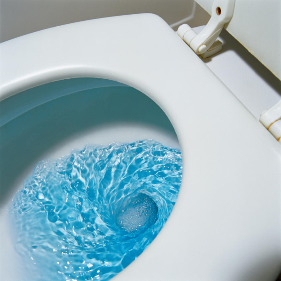 the worst 4 things people flush down their toilets are you guilty
