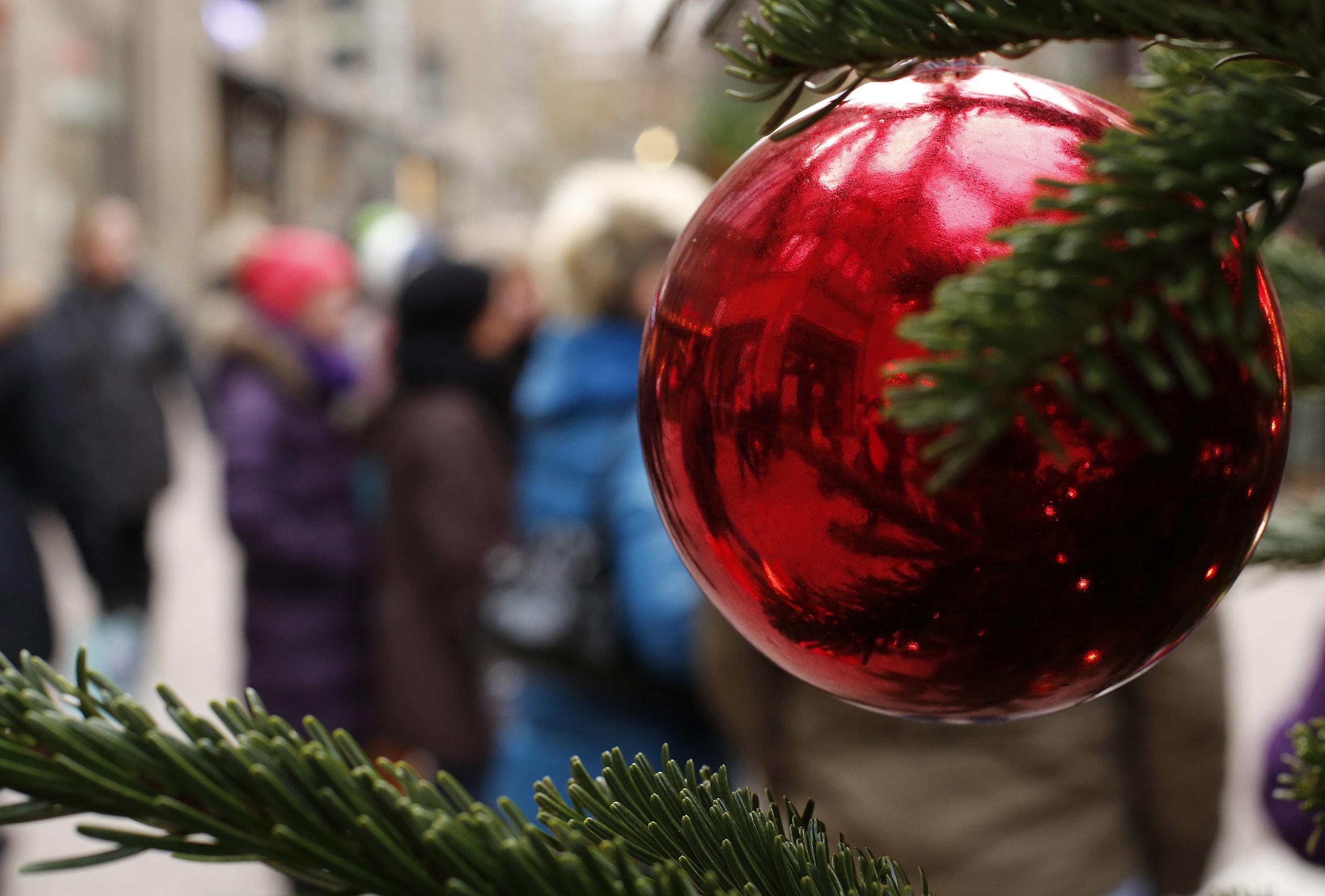 Top 10 Real Christmas Trees [LIST]