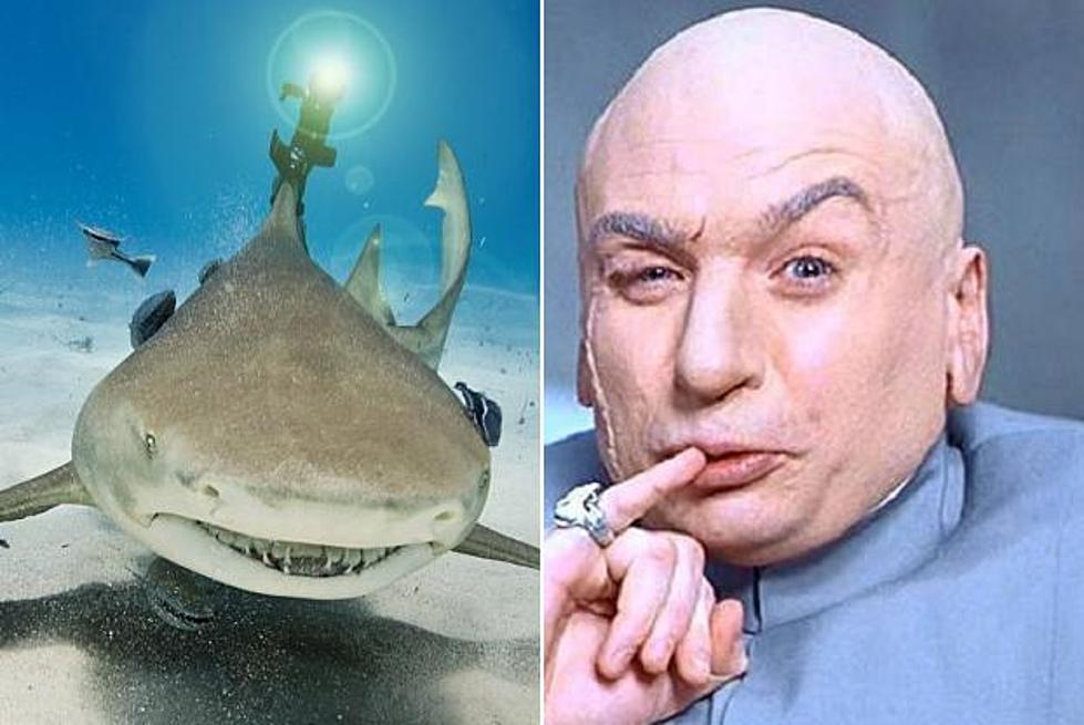 paging dr evil science finally puts laser beams on sharks