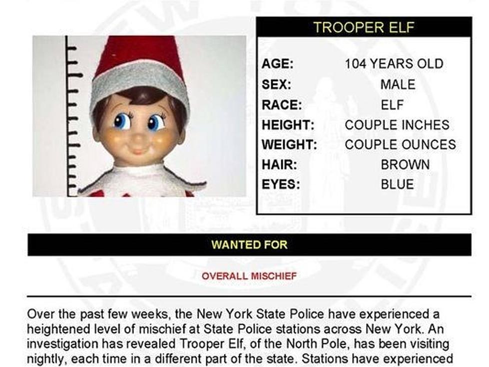 New York State Police Release This Warrant Search