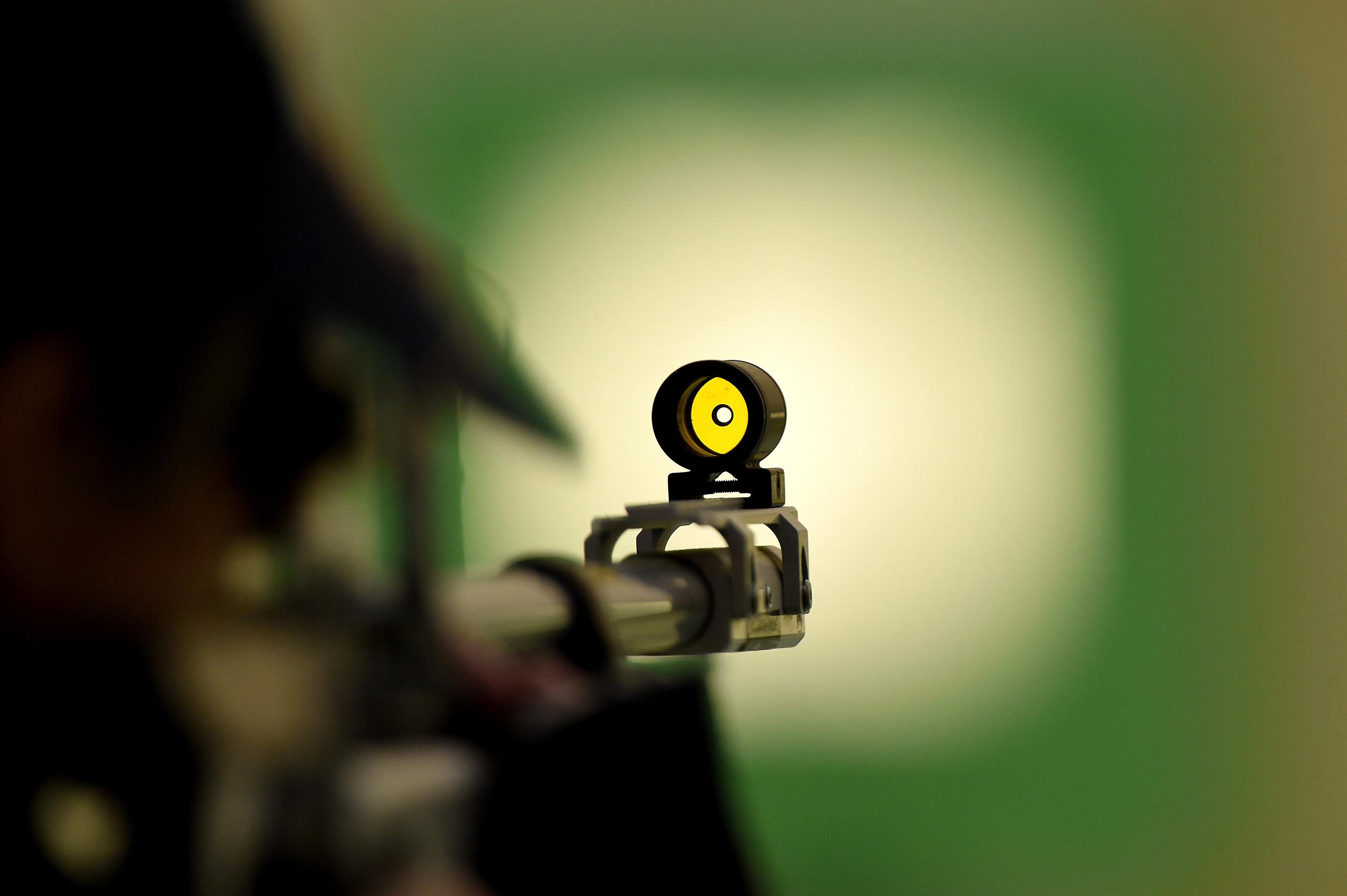 Diy Cheap Resetting Gun Target