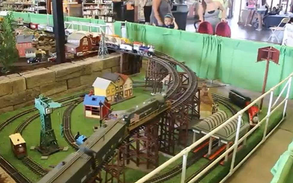 Incredible Model Train Display at the Erie County Fair