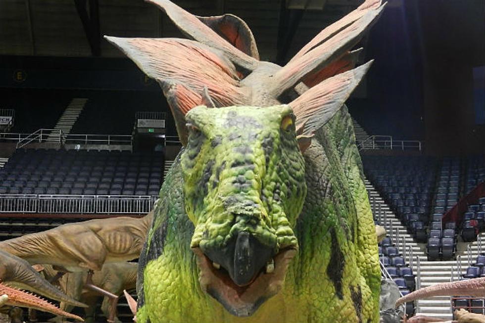 Jurassic Quest Dinosaur Exhibit To Visit Casper [PHOTOS]