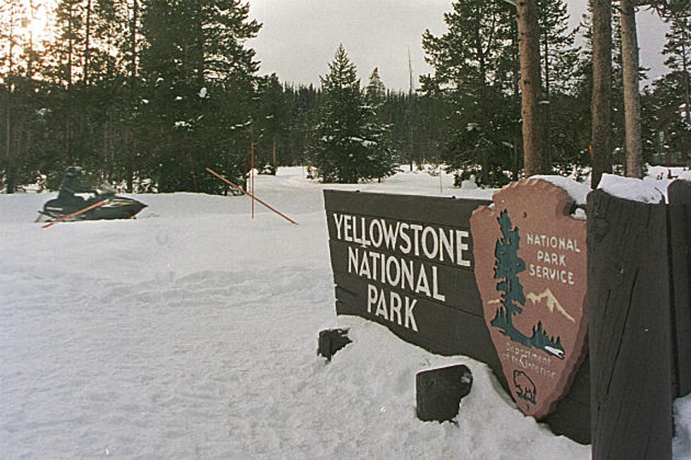 Yellowstone Entrances Close Park Plans 75m Of Road Work In