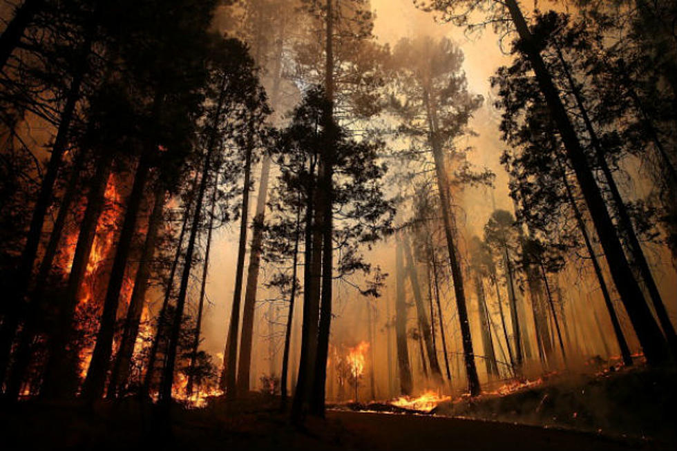New Wyoming Wildfire Burns Roughly 3,000 Acres Since Saturday