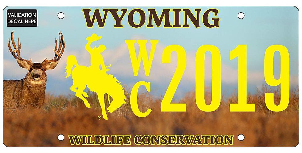 Image result for WILDLIFE CONSERVATION PLATES WYOMING