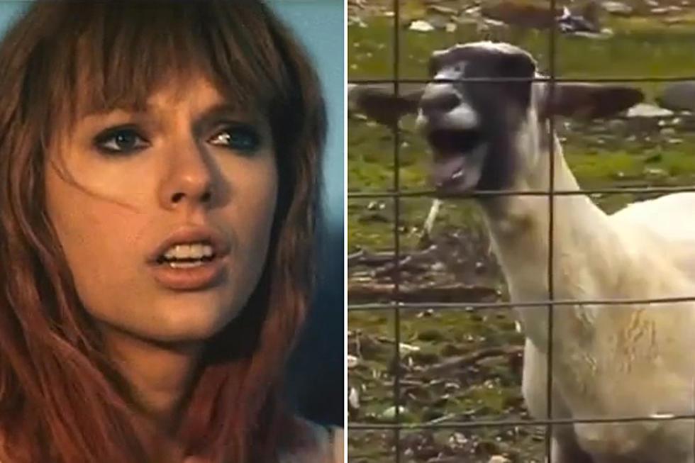 Taylor Swift And Goatye Video