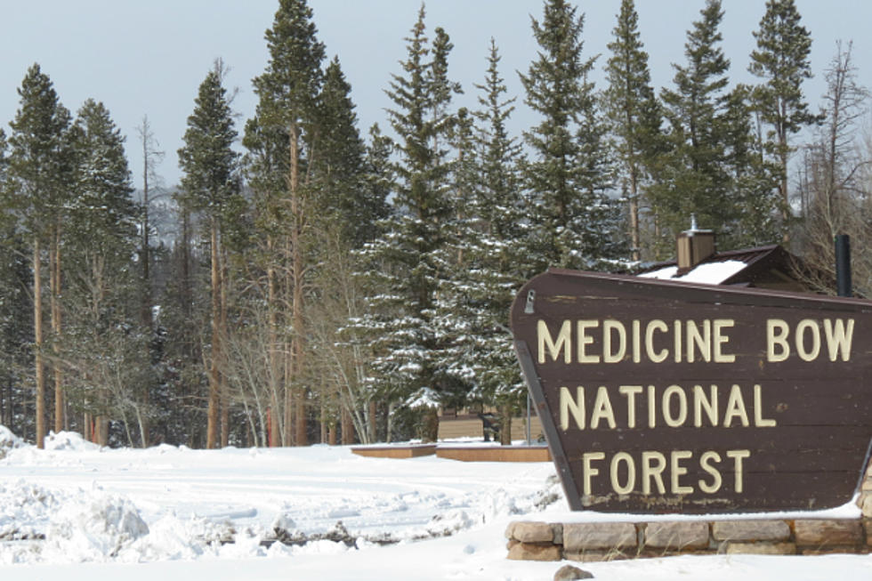 Update: Missing Group Rescued in Medicine Bow National Forest