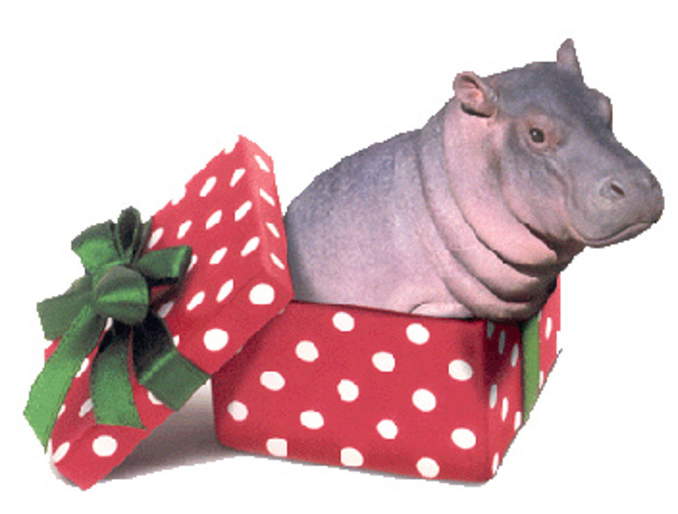 All I Want For Christmas Is A Hippopotamus.Kyssmas Helps Kids Get What They Want For Christmas Even A