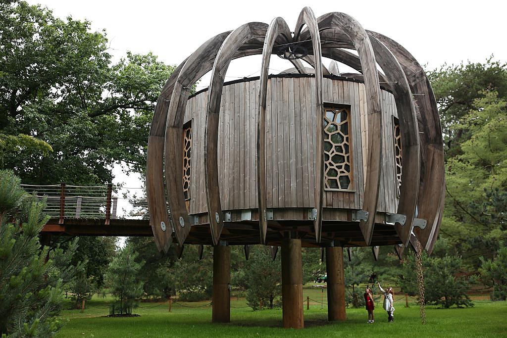 Win A Living Garden Sculpture From Buffalo Treehouse