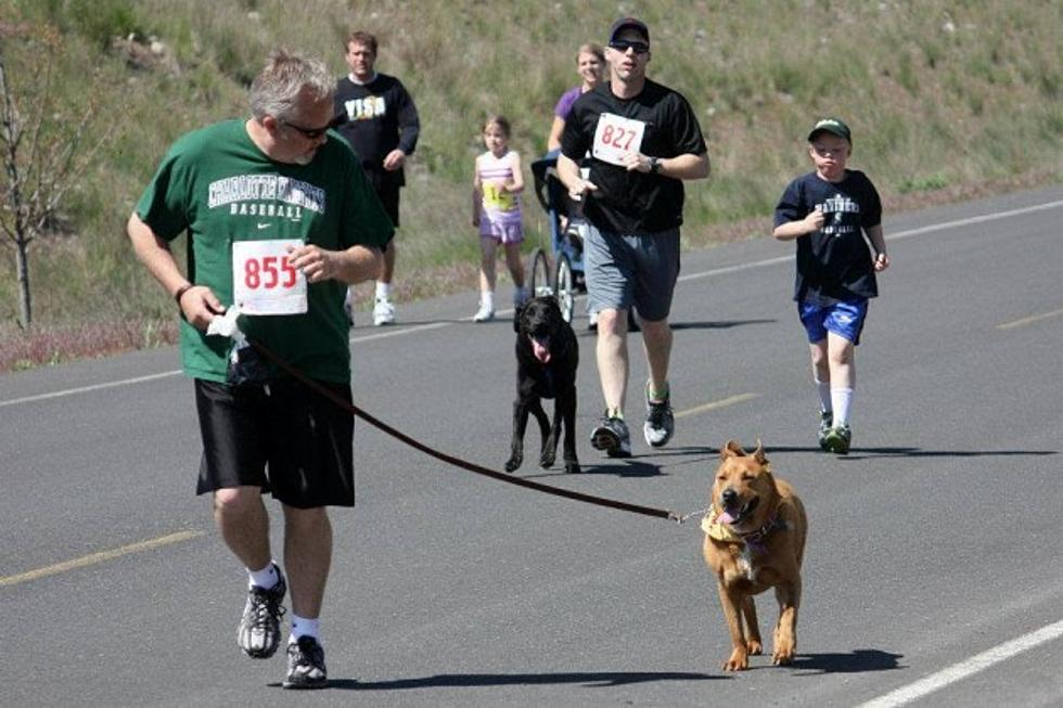 Humane Society's Annual Fun Run and Doggie Dash Happening in