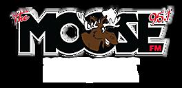 The Moose 95.1 FM