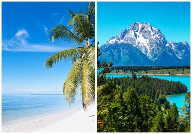 The beach vs the mountains