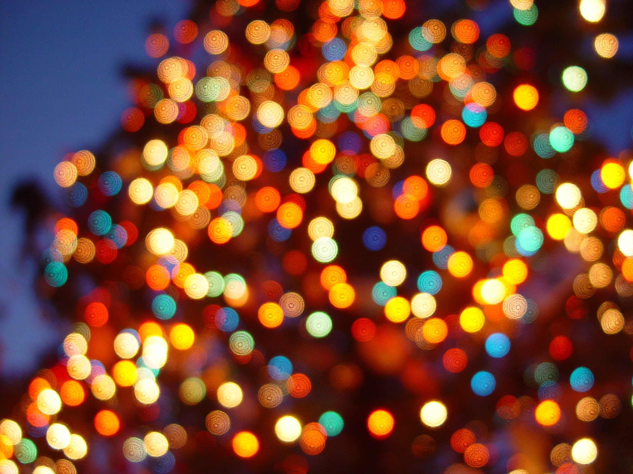 Christmas Lights In Tyler East Texas