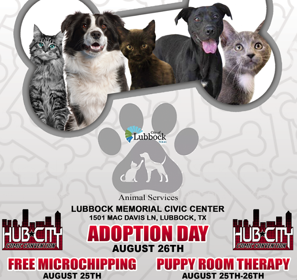 Hub City Comic Con To Host Pet Adoption Microchipping More