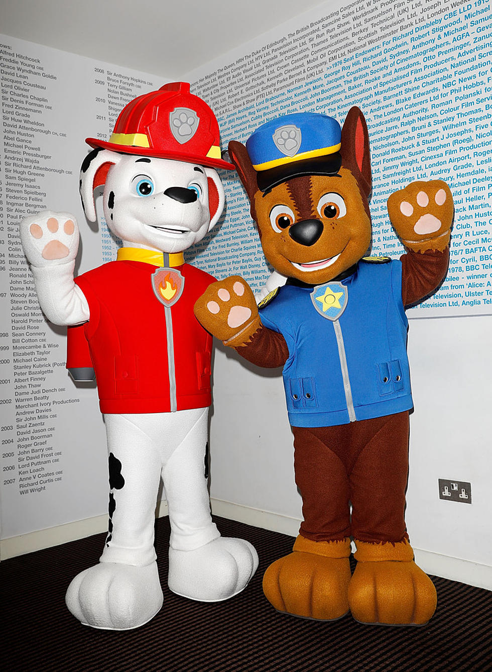 My Job For The Week To Learn All I Can About Paw Patrol By