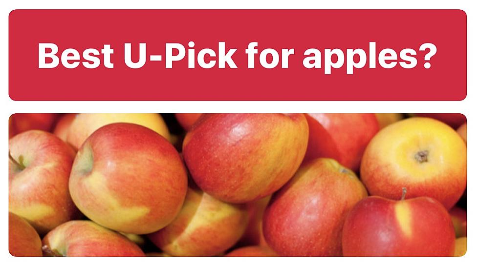 The Best Places To Go Apple Picking In Wny