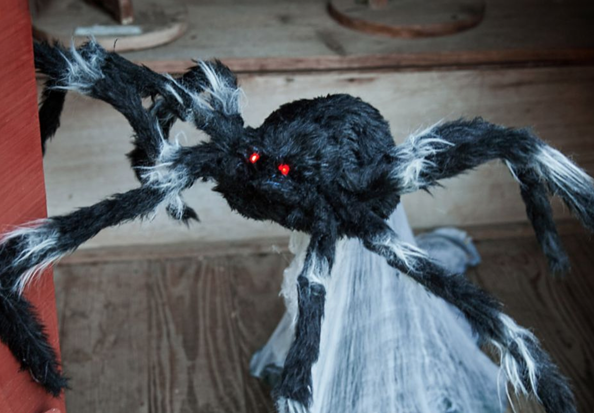Toddler Beats Up Animatronic Halloween Spider in Hilarious Video