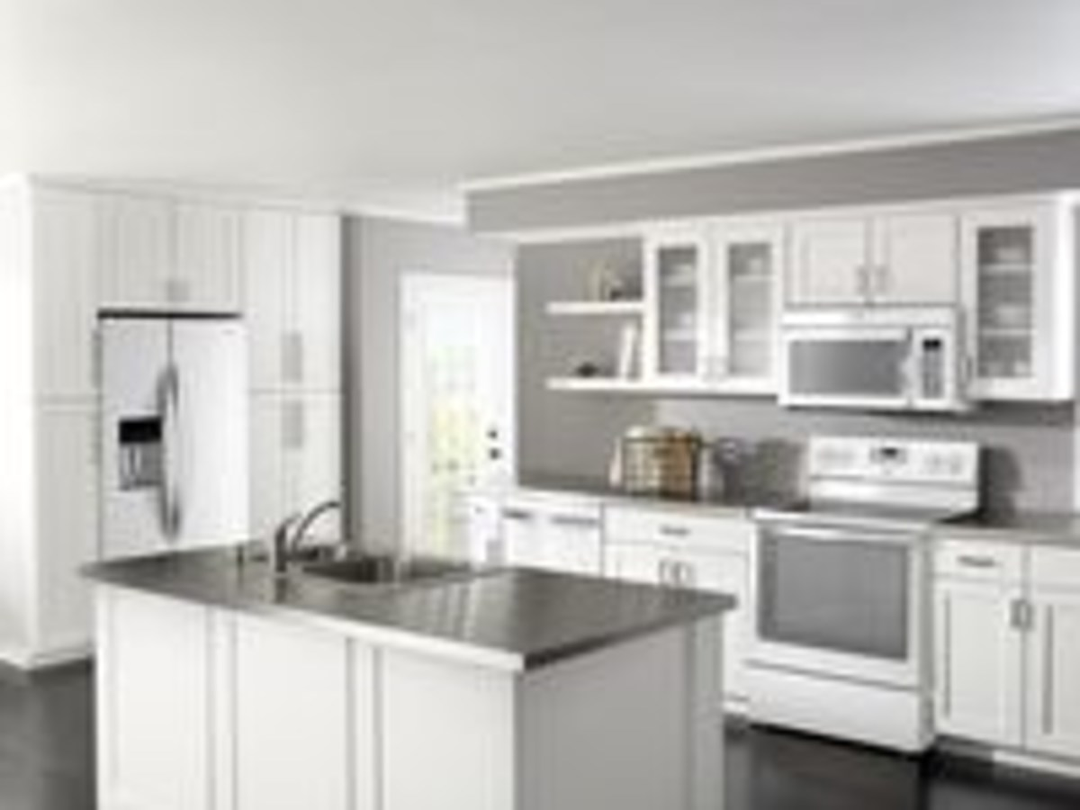White Ice Is The New Trendy Color In Home Appliances The Death Of Stainless Steel Appliances Is Heralded By Kitchen Designers