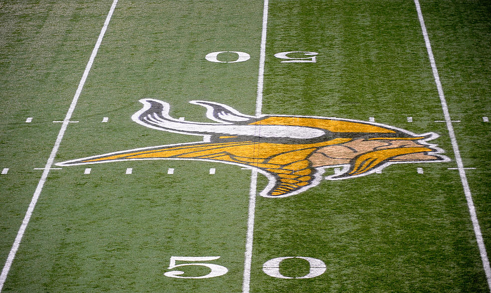 Duluth East Graduate Petitions To Be Next Vikings Mascot