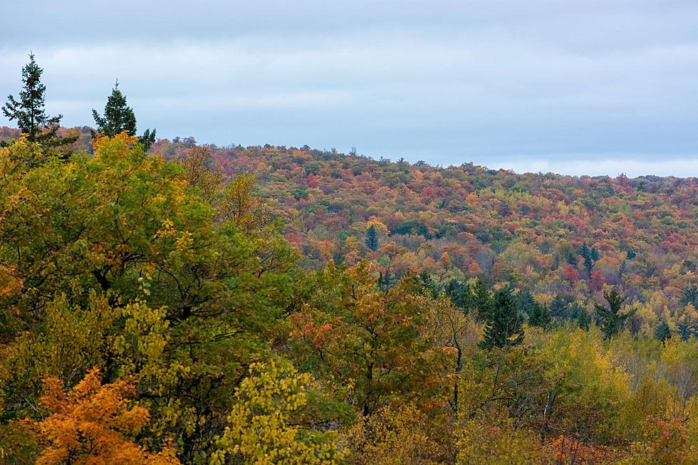 2017 Fall Leaves Colors Map For Northern Minnesota Wisconsin