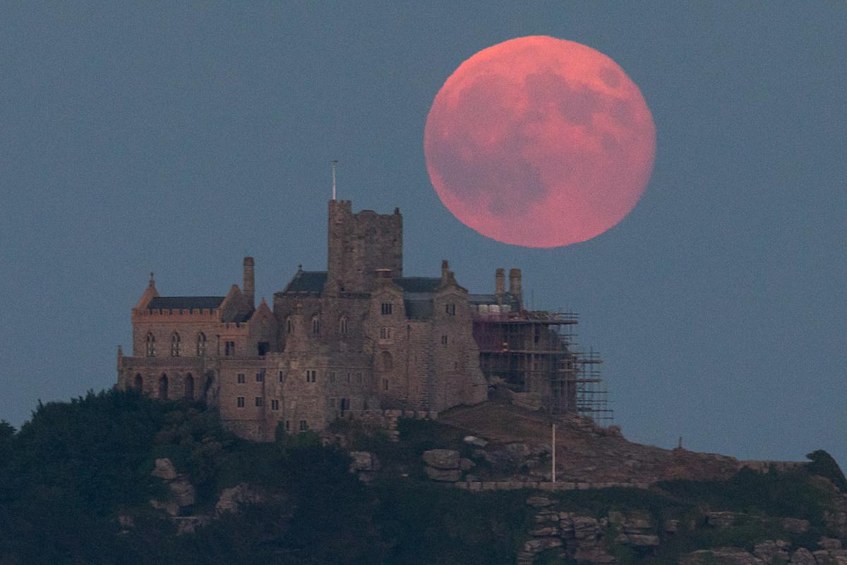 Земляничная луна фото