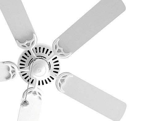Which Direction Should Ceiling Fans Blow In The Summer