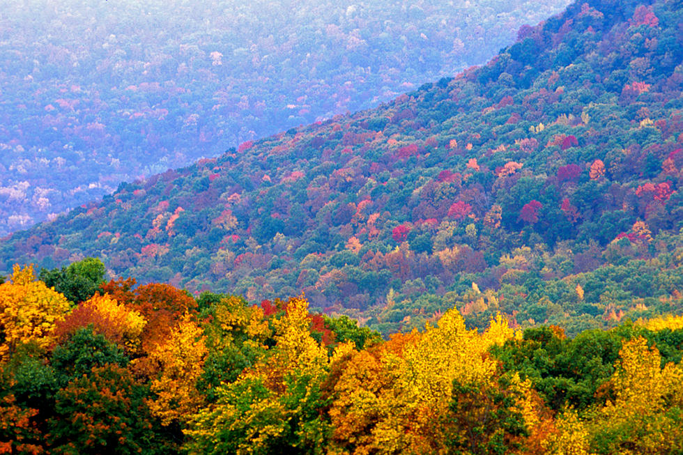 Arkansas Fall Colors 2020.When And Where To See The Colors Of Fall Foliage In Arkansas