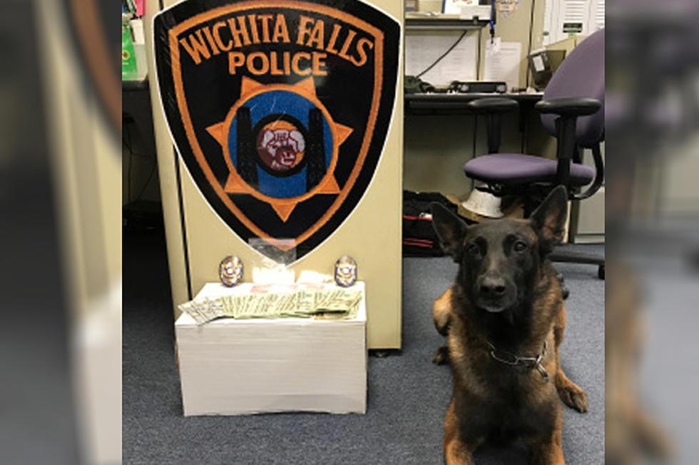 Wichita Falls K9 Unit Helps With Three Drug Arrests in Three Days