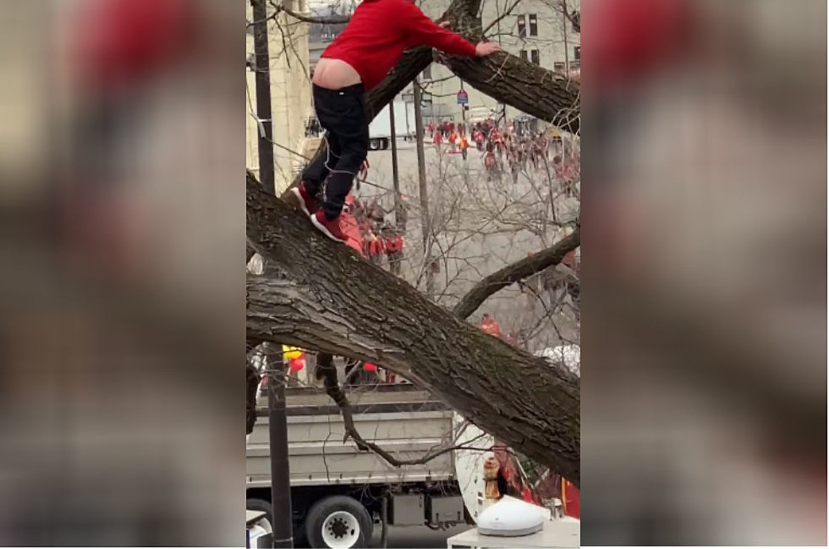 Ass Parade Images tree-climbing chiefs fan literally showed his ass - and then