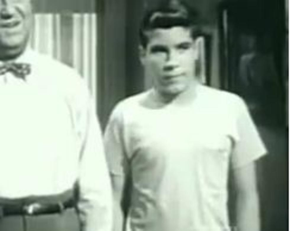Don Grady from 'My Three Sons' Has Passed Away