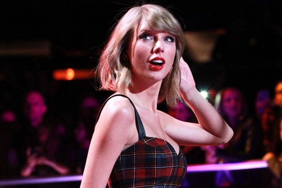 Taylor Swift Defends Fan After Bully Calls Her Ugly