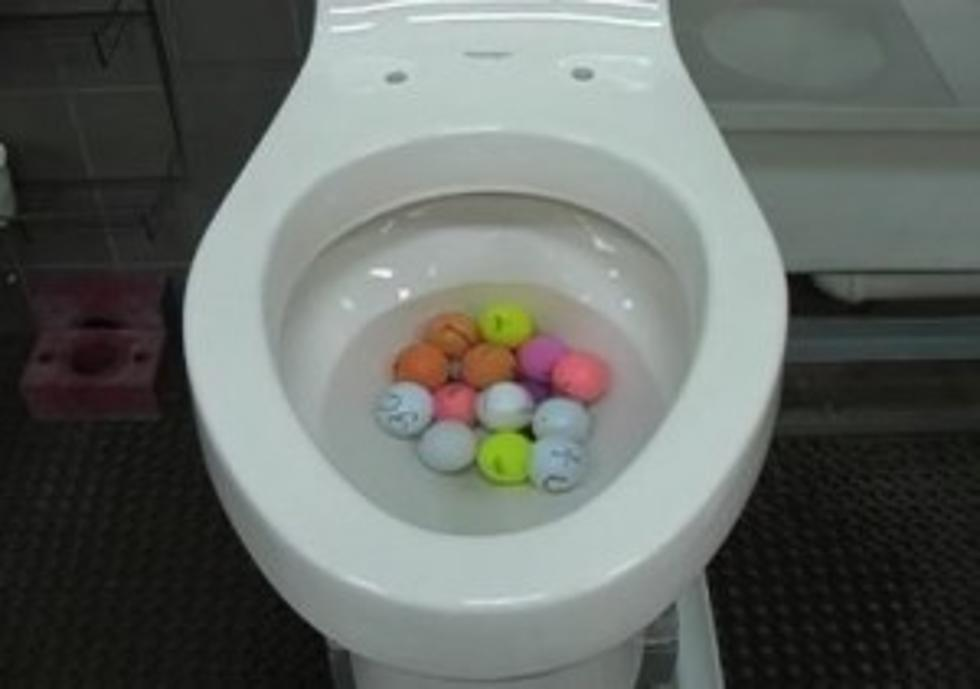 Sensational Hotel Super Toilet Can Flush 18 Golf Balls At Once Evergreenethics Interior Chair Design Evergreenethicsorg
