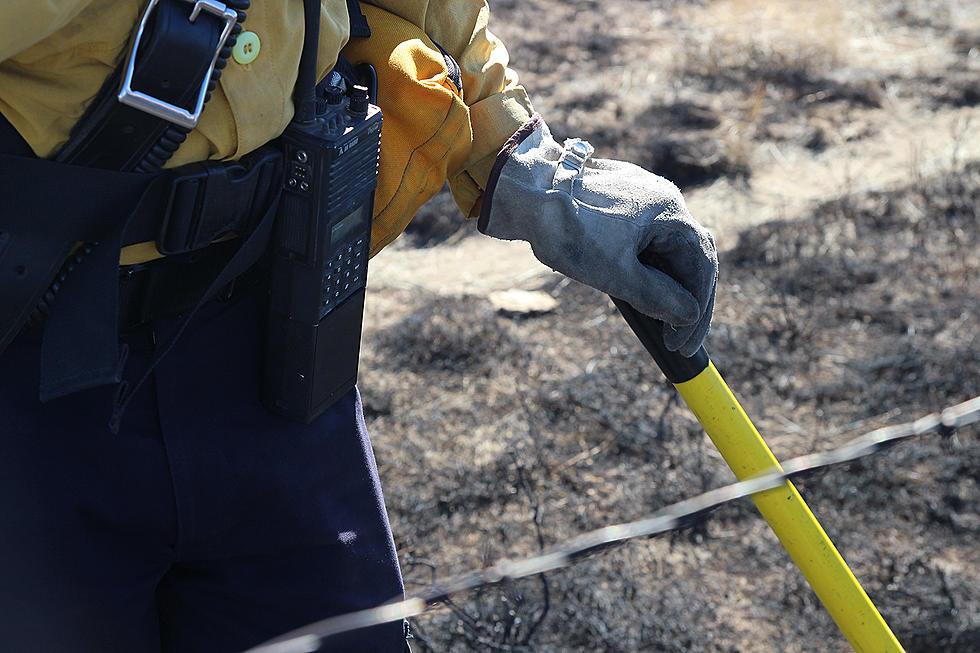 BREAKING] Wildfire Breaks Out in Albany County