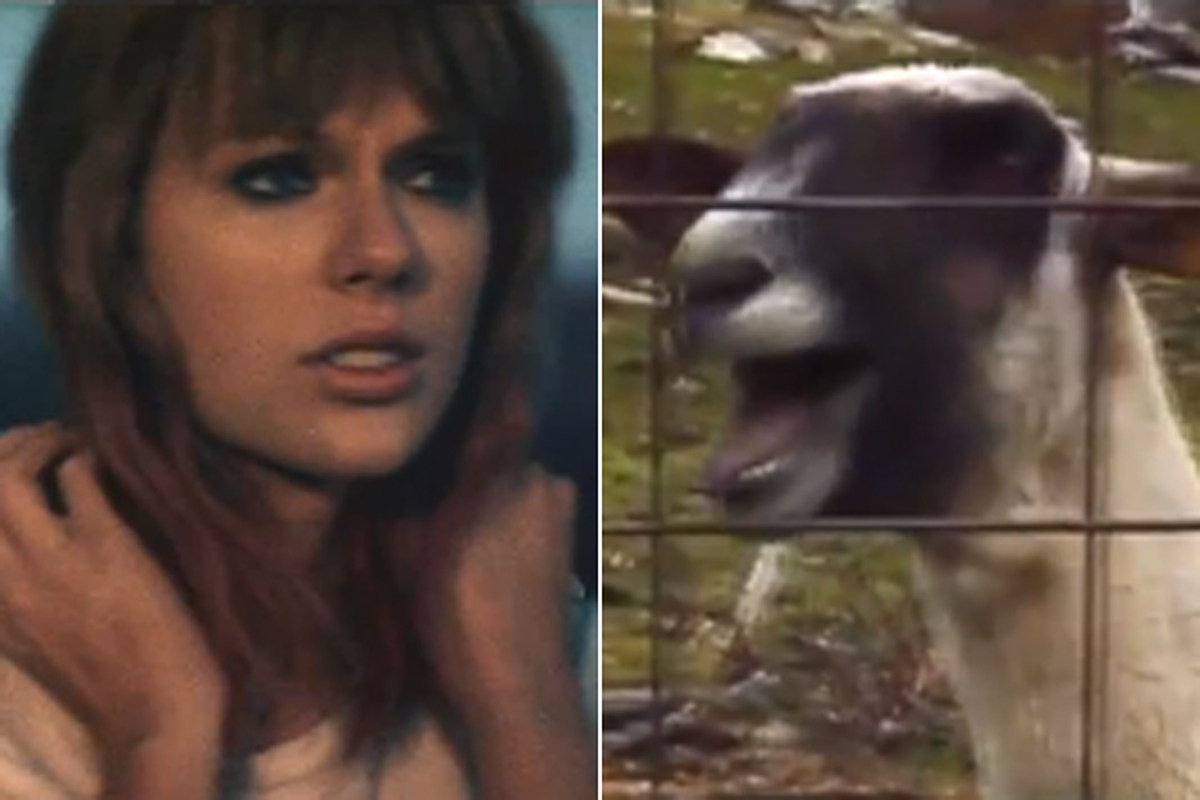 Taylor Swift S I Knew You Were Trouble Gets A Viral Remix With A Goat Video