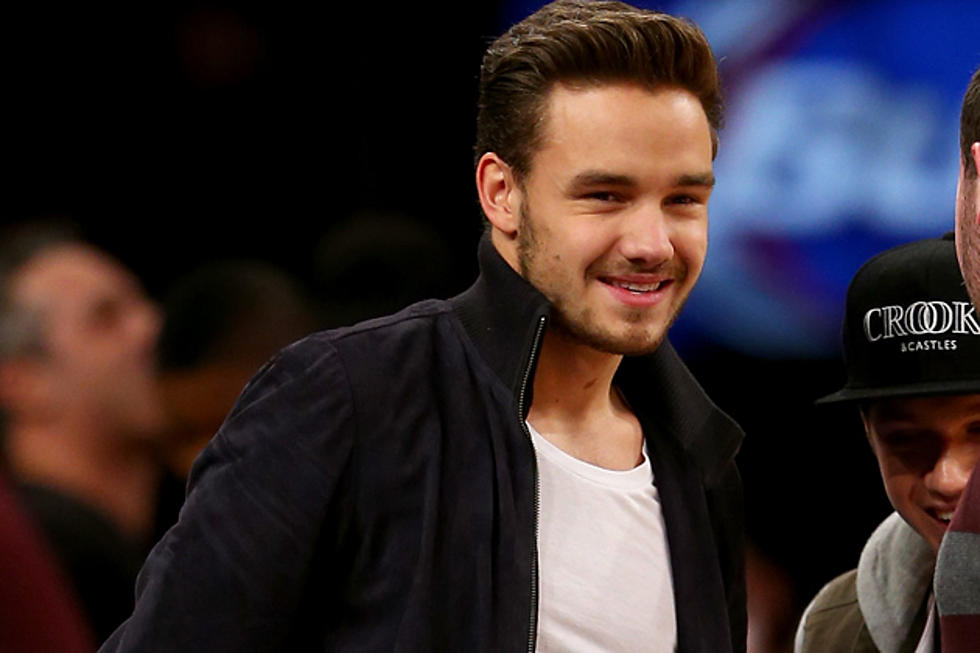 Liam Payne Injured During Concert, One Direction Bandmates Help