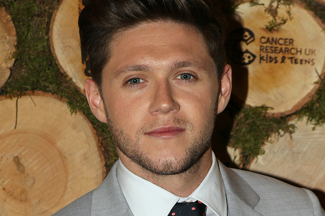 Niall Horan Just Shared a One Direction Reunion Update
