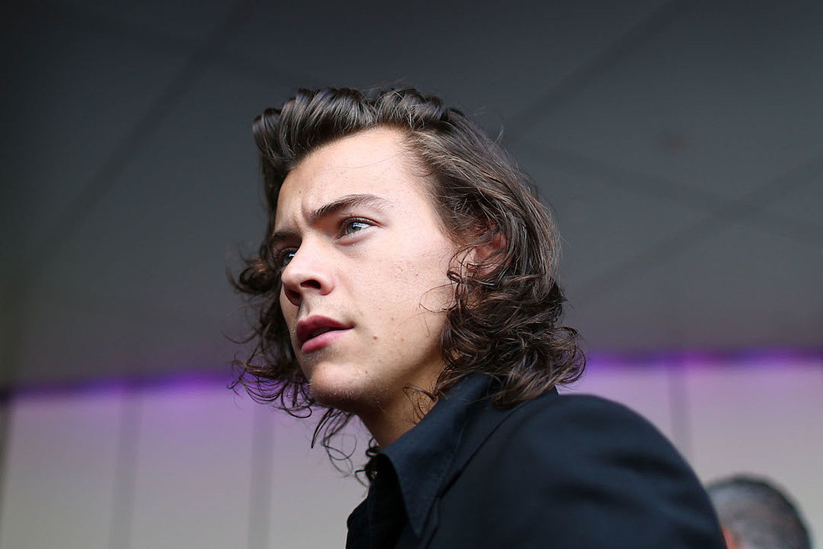 Harry Styles Loses Money On Hollywood Hills House Sale
