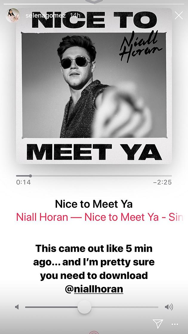 Image result for selena gomez shout out to nial on insta