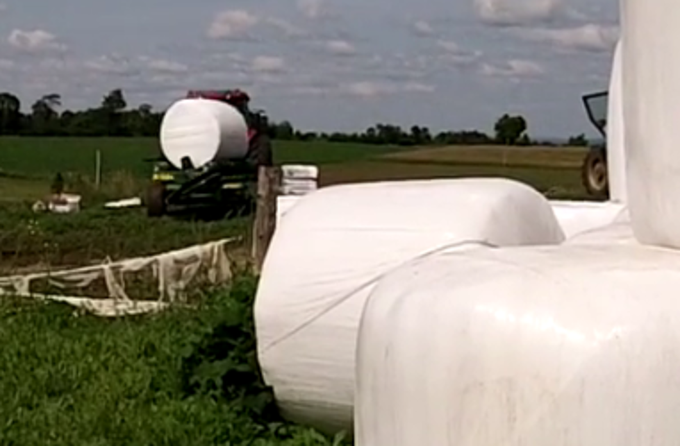 Why Are Farmers In Acadiana Wraping Hay In Plastic AND How