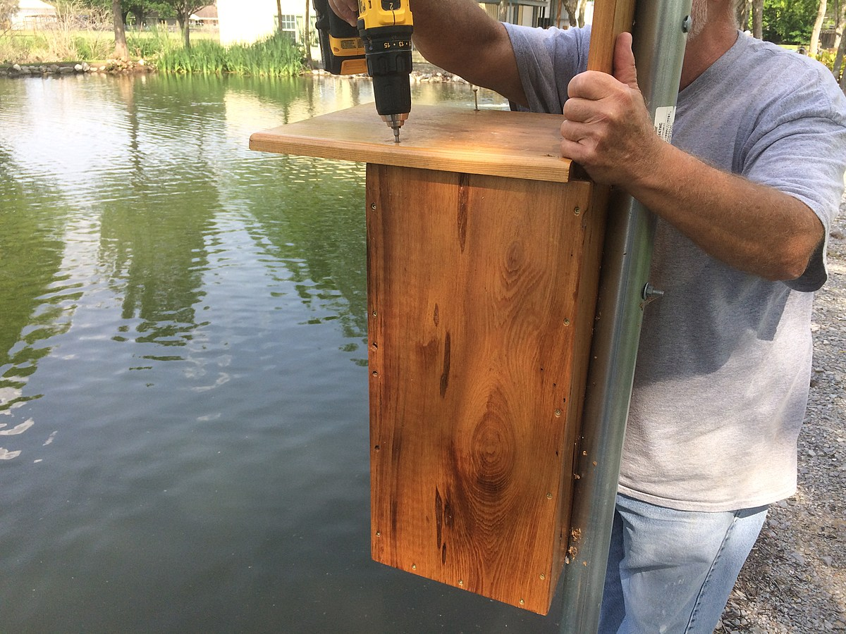 how to build wood duck box