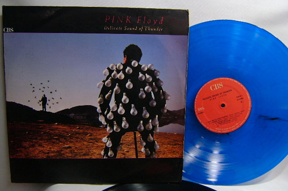 Pink Floyd 'Delicate Sound of Thunder' Rare Vinyl Sells For