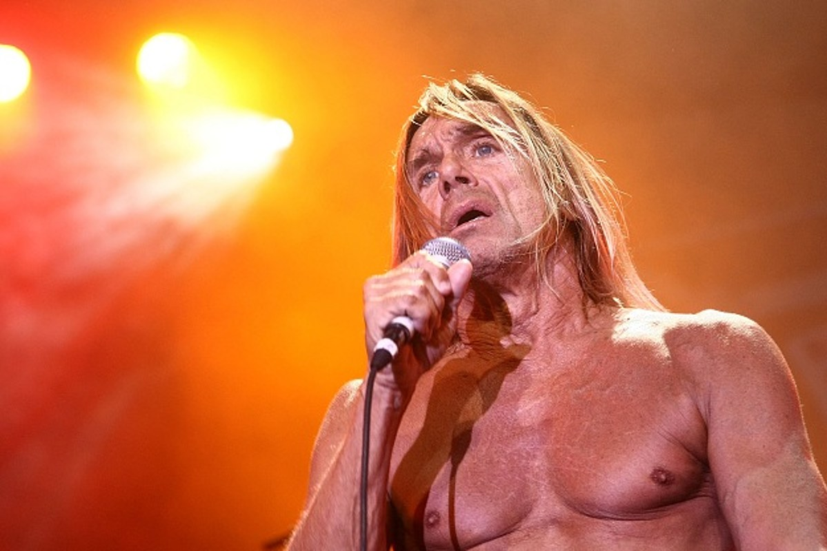 Torrent stooges discography and iggy the pop The Stooges