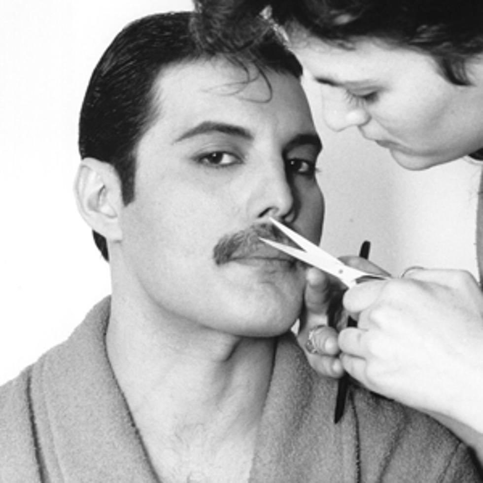 it s freddie mercury s mustache it s freddie mercury s mustache